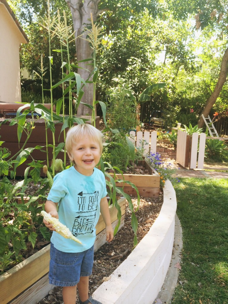 I'm going to be a big brother; homesteading